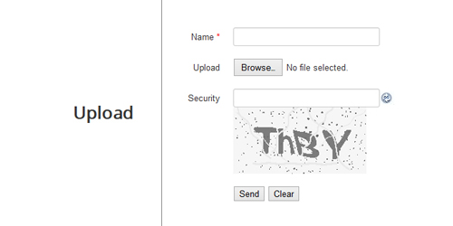 Include captcha field